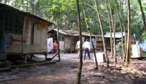 龙溪森林里的难民村